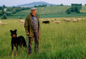 Sheepherder/Southern France